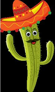 cactus man, cactus smiling with sombrero hat